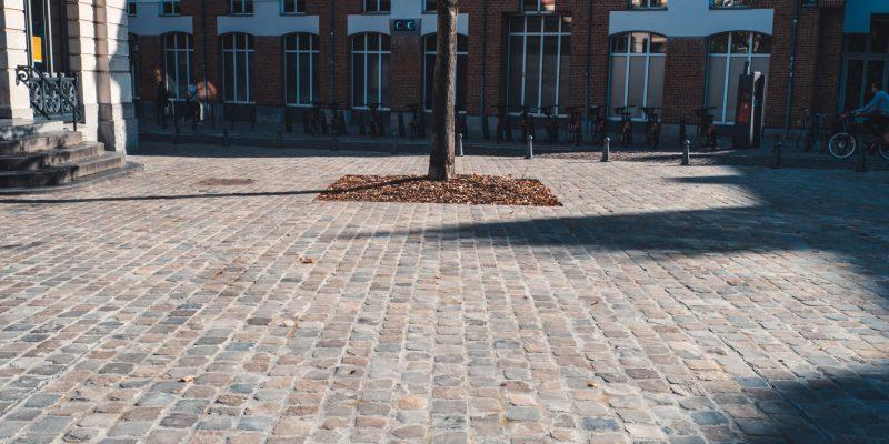 EJM_Lille_Travaux_Publics_Assainissement-138